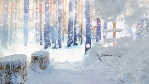 cabine-de-neige-hydralis