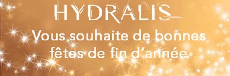 hydrais-voeux-2018